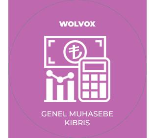 AKINSOFT Wolvox Genel Muhasebe (Kıbrıs)